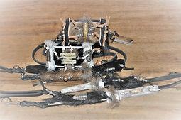 Schmuckhalsbänder, Windhundhalsband, Whippethalsband, Galgohalsband Greyhoundhalsband, Podencohalsband