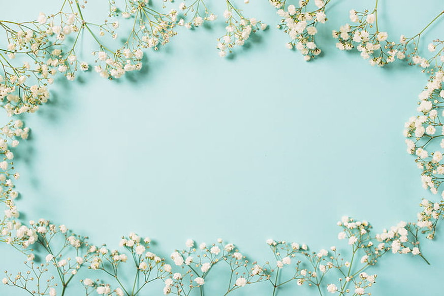 flowers-background-frame-white-white-hd-