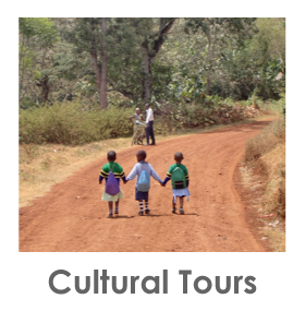 Cultural Tours, Kilimanjaro, Coffee, Banana, Local food, cultures in Tanzania