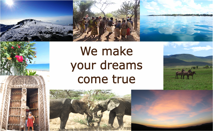 We make your dreams come true in you trip in Tanzania