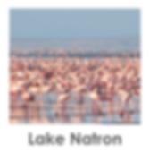 Lake Natron, Flamingos, Safari, Tanzania