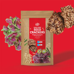 Onions & Greens - Guilt Free Seed Crackers