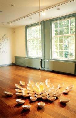 Lotus, Rijswijk Museum[NL] 2004