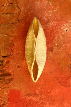 Metamorphosis, 2007