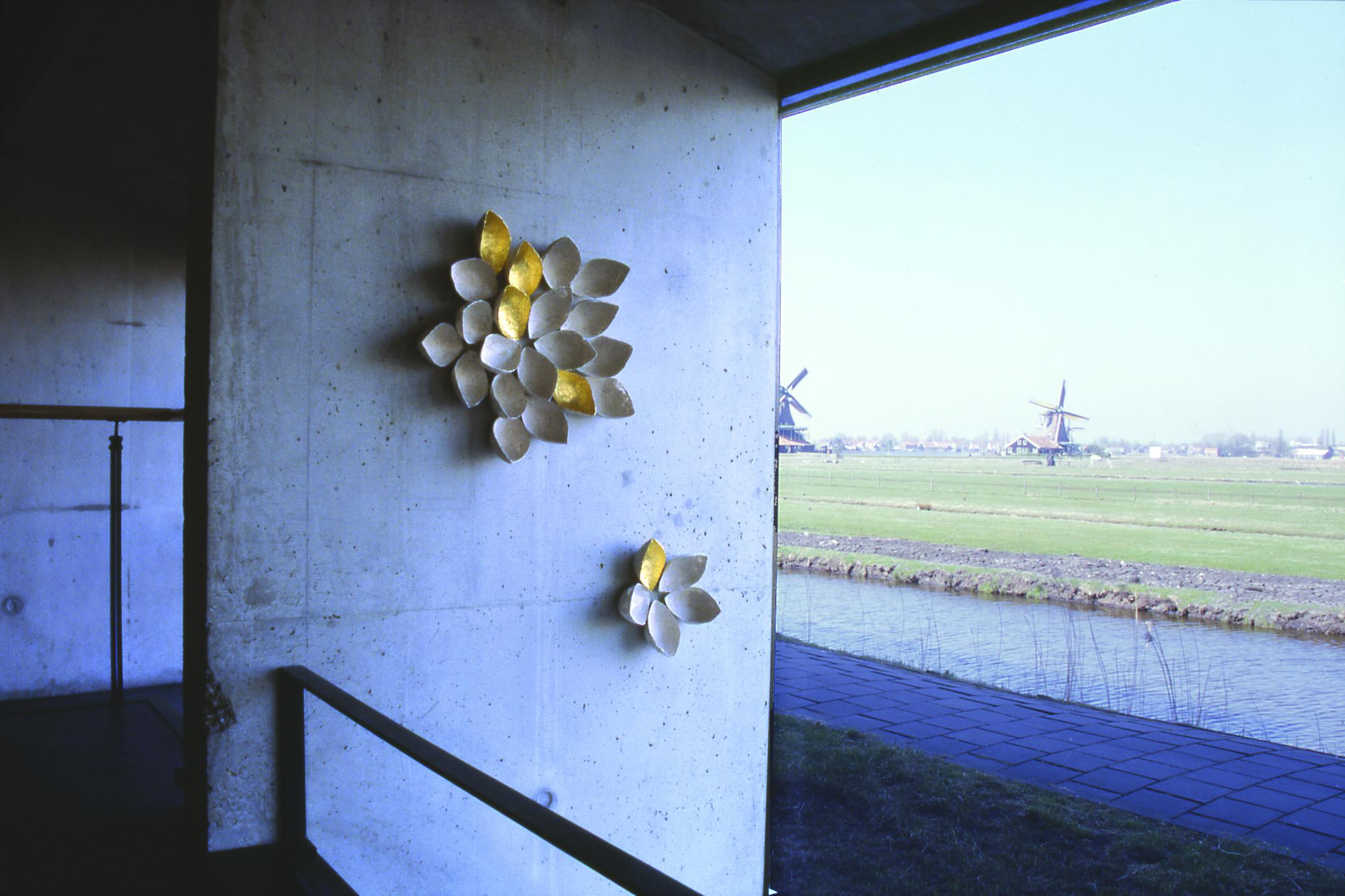 Lotus, Zaan museum 2003