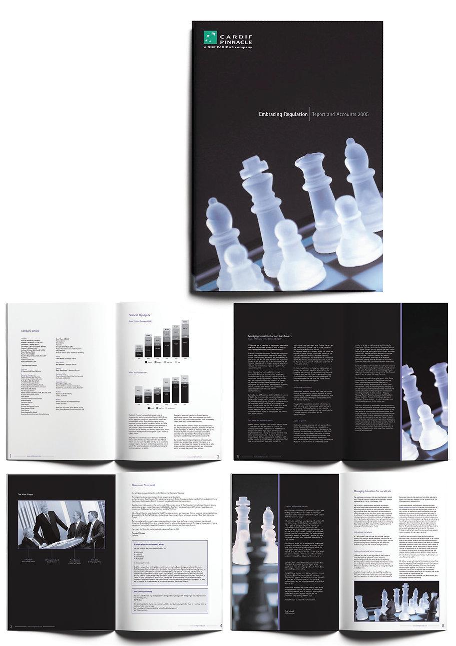 Pinnacle report 2005.jpg