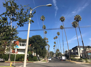 Santa Monica City Council Denies Appeals of Cell Tower Installation