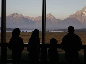 Group: Public in dark about cell tower plans in Grand Teton