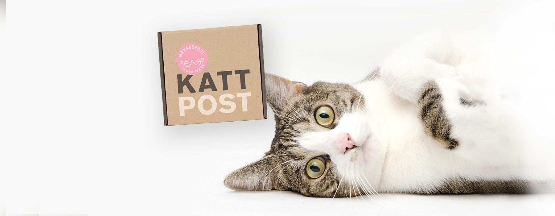 Kattpost