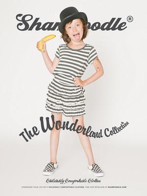 Shampoodle SS 2013