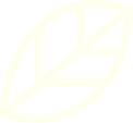 FEUILLE2_GAUCHE