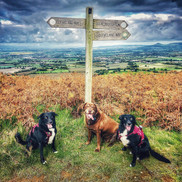 Adventure Day on the Cleveland Way!