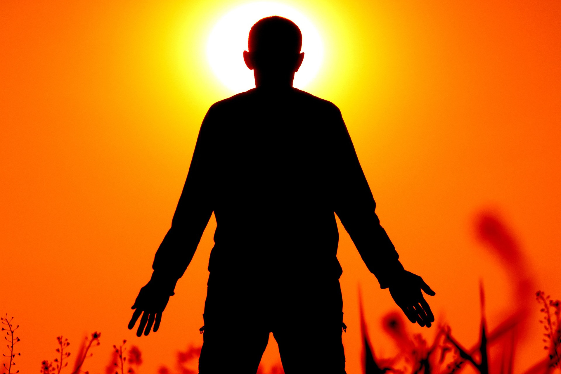 Qigong for Wellbeing: Wednesday Evening