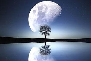 gazing moon.jpg