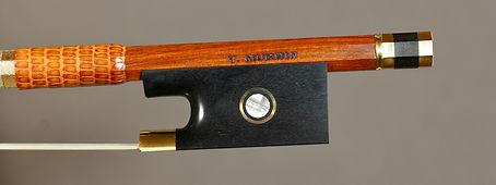 violinbow frog