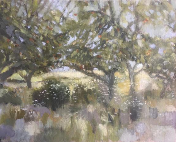 September orchard