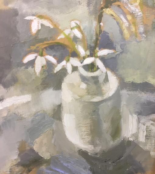 Pot of snowdrops