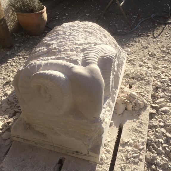 Ram (in progress)