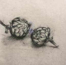 Two artichokes