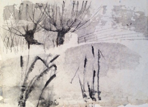 Willows and bulrushes