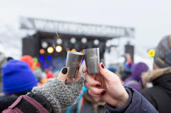 WinterWonderGrass Reusable Sample Cups