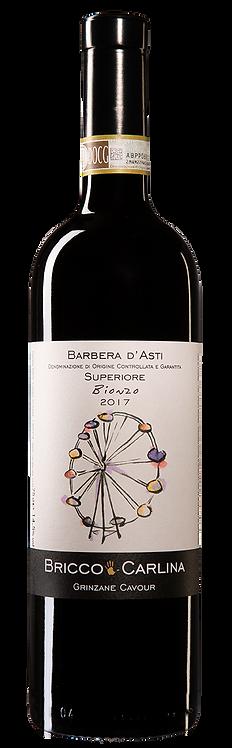 """BRICCO CARLINA - Barbera d'Asti Superiore DOCG """"Bionzo"""" 2017"""