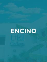ENCINO.png