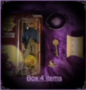 Werewolf coffin box #4 items.jpg