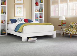 Direct Carpet Bedroom Carpeting