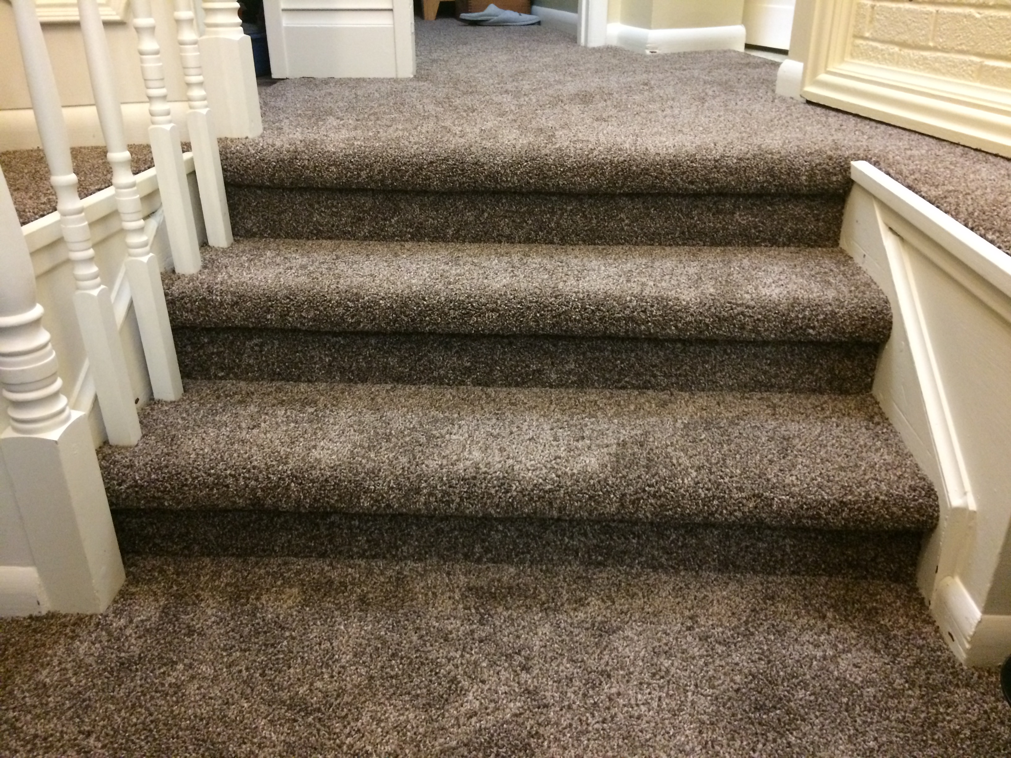 carpet reno