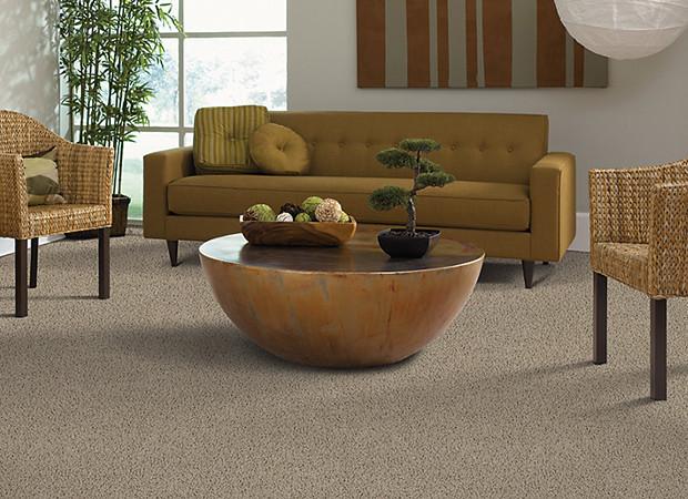 Carpet Living Room 3