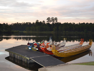 10 Reasons You Should Move to The Woodlands