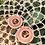 Thumbnail: Brincos de Piaçava (Pequeno)