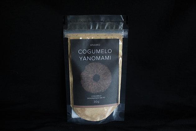 Cogumelo Yanomami em Pó