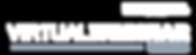 virtual-webinar-logo-lockup2.png