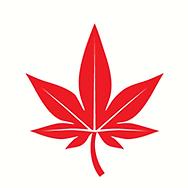 Boast Logo.png