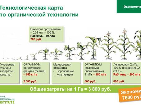 К вопросу об экономической эффективности органических технологий.