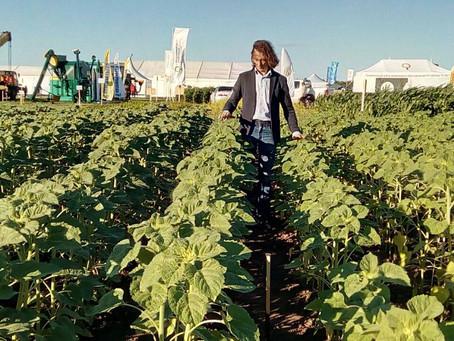 Органика на дне поля в Татарстане: быстрее, выше, сильнее!