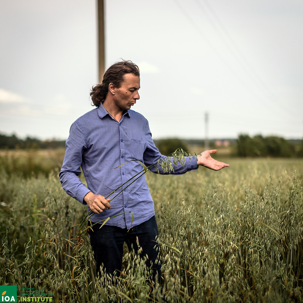 Иван Гараев на опытных полях Института органического сельского хозяйства