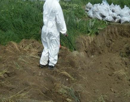 Рекультивация пестицидного захоронения в Ростовской области