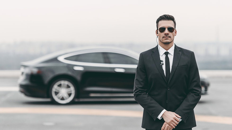 London Chauffeur including Meet and Greet Service