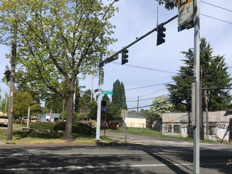 A street view in South Seattle. A streetlight, some houses, and trees.