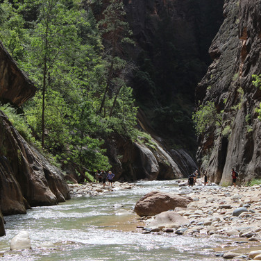 This is the Virgin River leading into the canyon