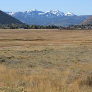 Elk Refuge area.  This area is full of Elk in the winter months.