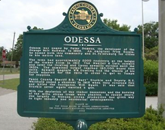 odessa, florida best personal fitness tr