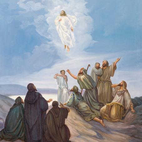 Ascension ( Luke 24:45-53 )