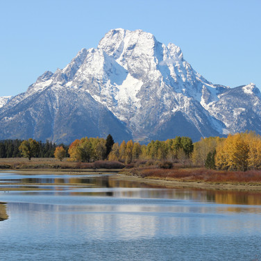 Oxbow Bend is a popular tourist area for sight seeing wildlife.