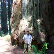 Mr.Cain in front a massive tree