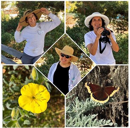 manhattan beach botanical garden volunte