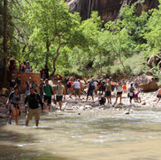 This is the gathering area from the parking lot where people hang out debating on weather or not they want to walk up the Virgin River into the canyon.